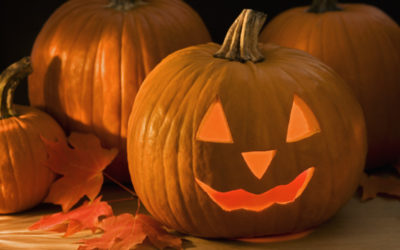 In this post we show you how to preserve your pumpkins