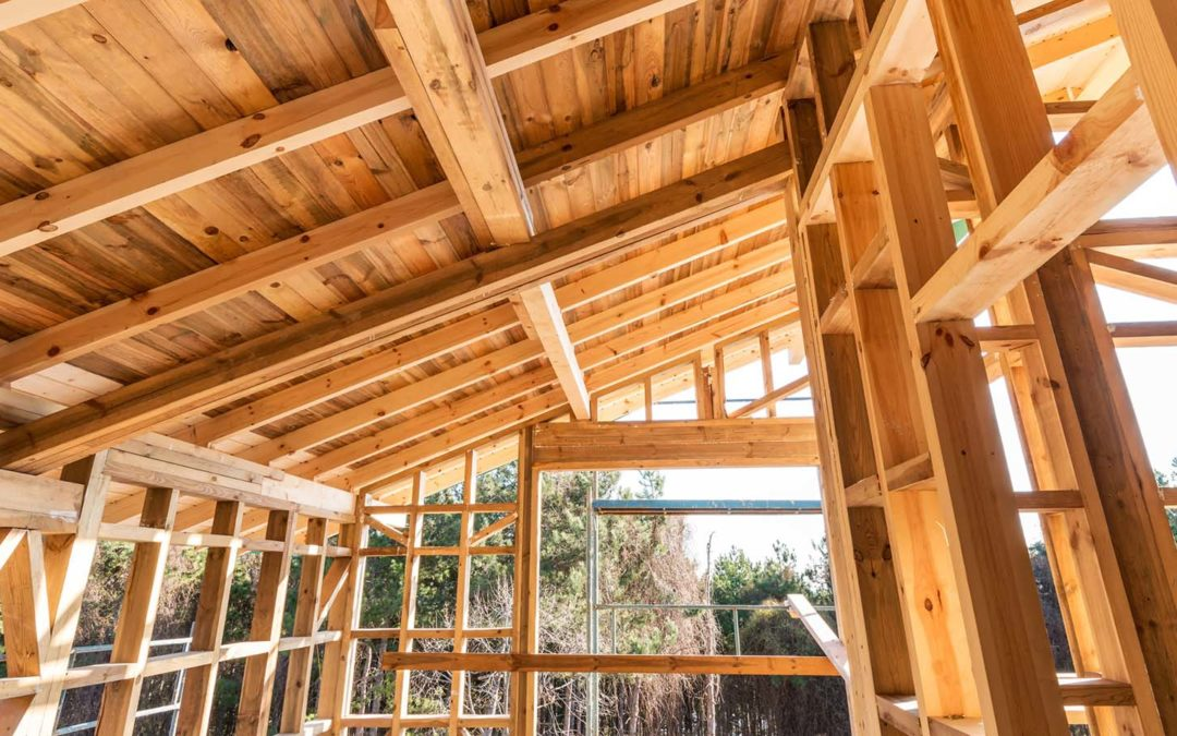 A1 Pro's 5 Basic Carpentry Tools