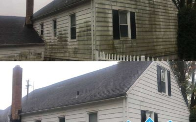 Pressure washing services take care of all possible exteriors